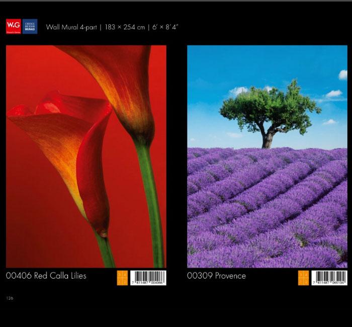 پوستر گل نیلوفر - پوستر گل زعفران - کاغذدیواری سه بعدی پوستر W+G دکوراسیون داخلی