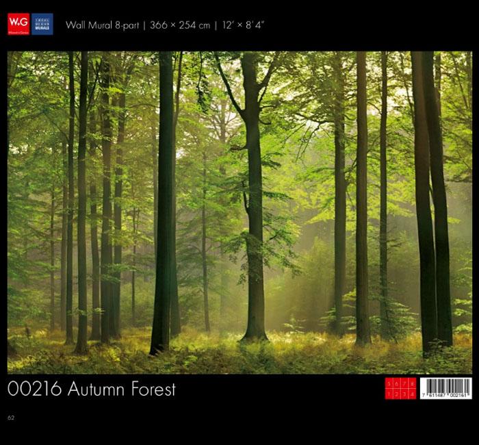 پوستر جنگل پاییزی - کاغذدیواری سه بعدی پوستر W+G دکوراسیون داخلی