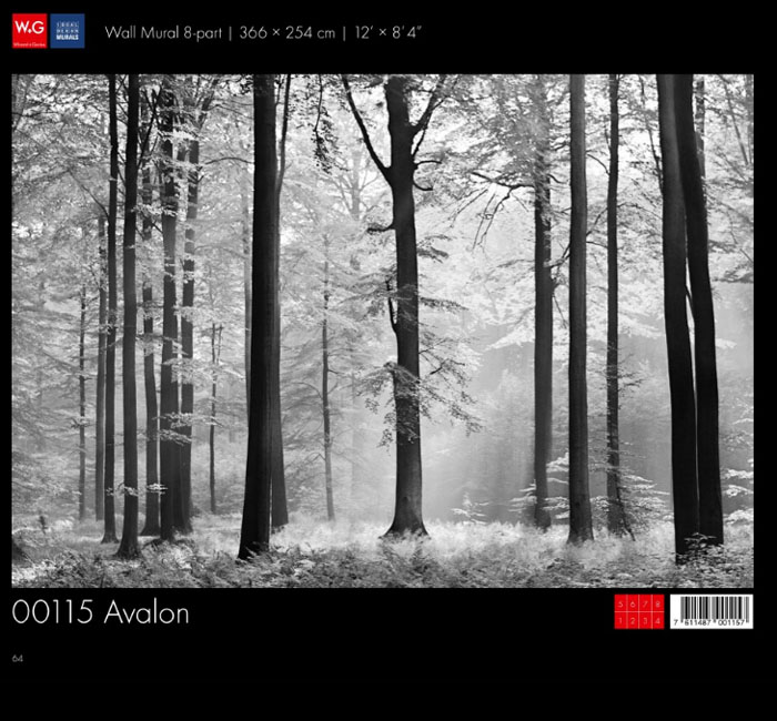 پوستر جنگل سیاه و سفید - کاغذدیواری سه بعدی پوستر W+G دکوراسیون داخلی
