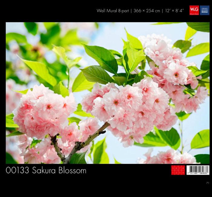 پوستر شکوفه درختان بهاری - کاغذدیواری سه بعدی پوستر W+G دکوراسیون داخلی