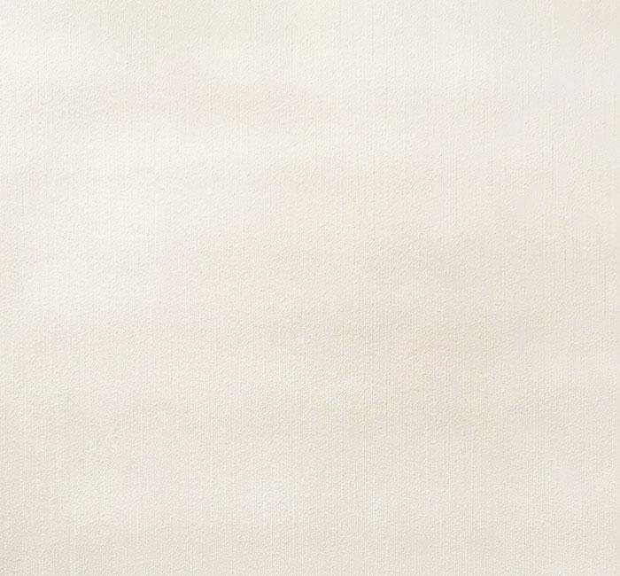 کاغذدیواری نیو دیزاین New Design     کاغذدیواری پلاستر       دکوراسیون داخلی پویانو      کد کاغذدیواری  810100