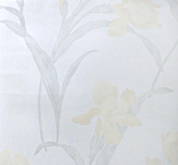 کاغذدیواری نیو دیزاین New Design     کاغذدیواری پلاستر       دکوراسیون داخلی پویانو      کد کاغذدیواری  810123