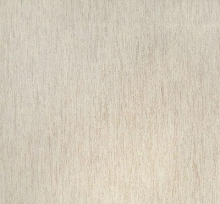 کاغذدیواری نیو دیزاین New Design     کاغذدیواری پلاستر       دکوراسیون داخلی پویانو      کد کاغذدیواری  810158