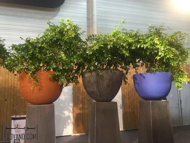 جلوه ای تازه به دکور با گلدانهای مدرن-سایت پویانو