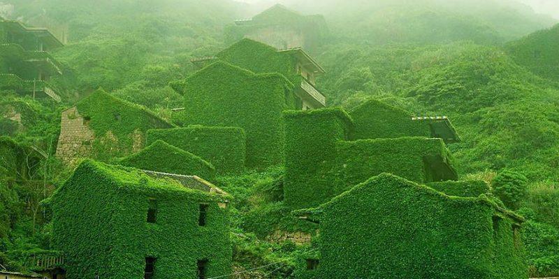 طبیعت و معماری روستا متروکه سبز در چین