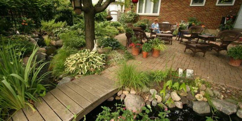 ۴ گام برای داشتن یک باغچه بی نظیر در خانه
