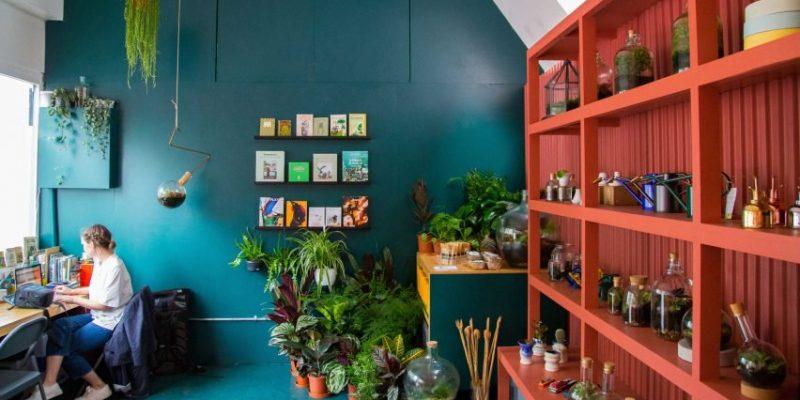طراحی داخلی گلخانه با الهام از رنگهای یک تصویر در اینستاگرام