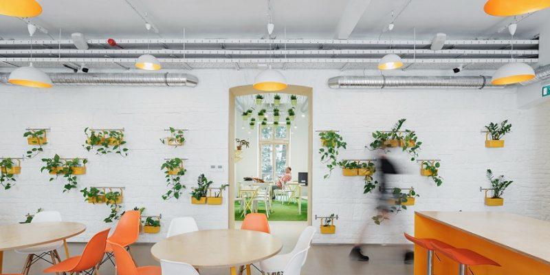 طراحی داخلی مسافرخانه Flow / معماری استودیو PRTZN