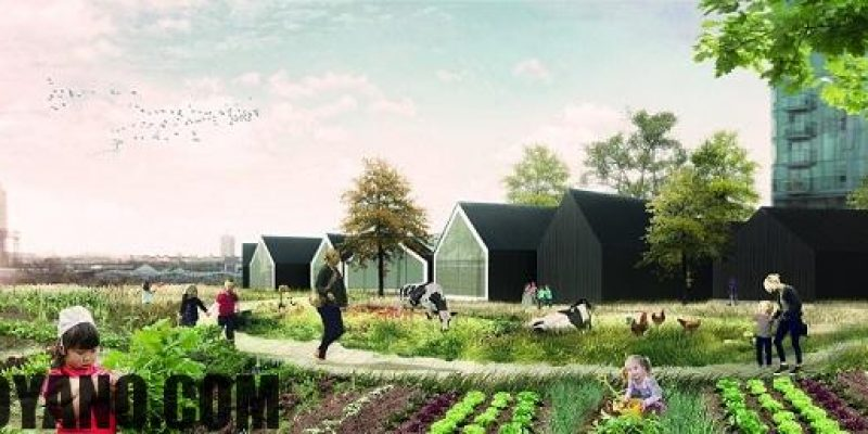 معرفی پروژه های خارجی: معماری دو مهدکودک نمونه