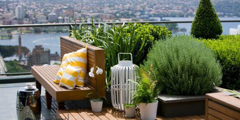 طراحی روف گاردن : پشت بام خانه تان را پاتوق خوش گذرانی کنید!