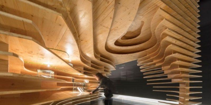 معماری و طراحی داخلی موزه مگالیتیک Megalithic / شرکت معماری CVDB arquitectos + Tiago Filipe Santos
