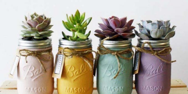 چند روش ساده برای سر و سامان دادن به گیاهان خانگی برای زیبایی دکوراسیون منزل