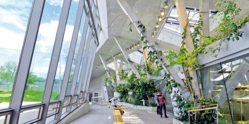 معماری خانه حیوانات در باغ وحش | معماران Hascher Jehle Architektur