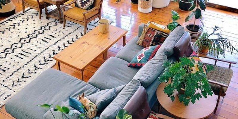 گیاهان زینتی در دکوراسیون خانه و ۸ دلیل برای نگه داری از آنها