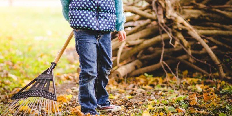 جمع آوری برگ های پاییزی : حیاط منزل تان را سروسامان بدهید!