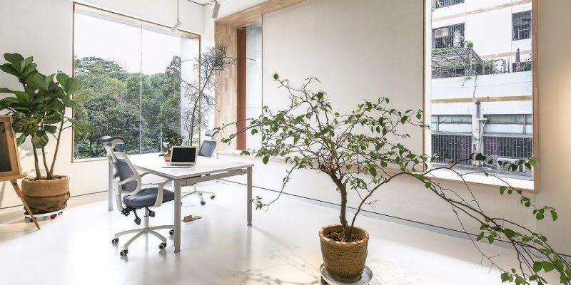 طراحی داخلی استودیو Bloom / معماری استودیو Bloom