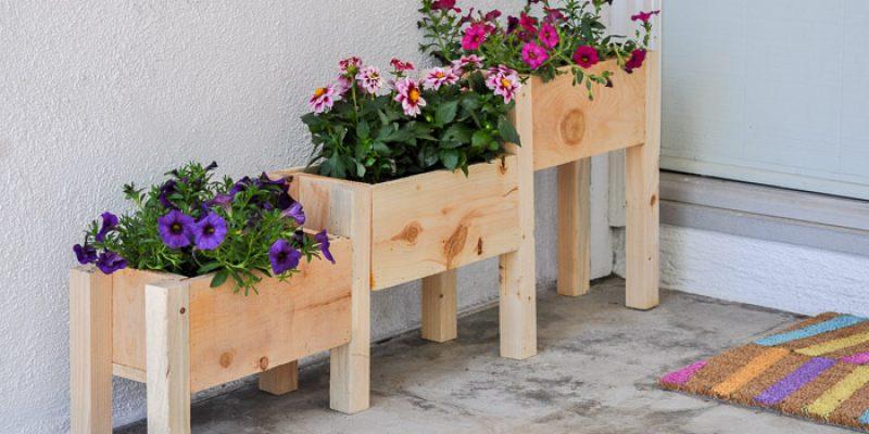 ساخت استند گل و گیاه : این پلکان سبز را در منزل بسازید!