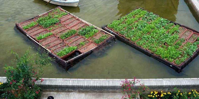"""ایده معماری """" زمین های کشاورزی شناور """" برنده جایزه شنژن UABB  / معمار توماس چانگ"""