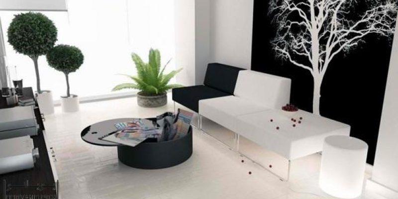۲۰ اتاق پذیرایی مدرن با تم سیاه و سفید