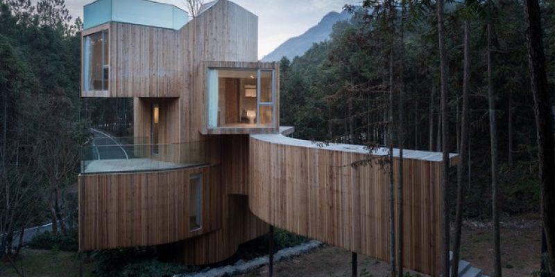 طراحی خانه درختی کوهستان کییان / معماری Bengo