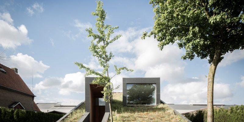 خانه Pibo با سقف شیبدار سبز و فضای داخلی دوبخشی / طراحی شده توسط OYO