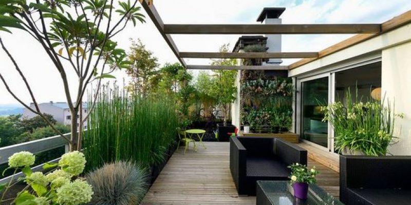 چند ایده جالب برای معماری و طراحی فضای بام