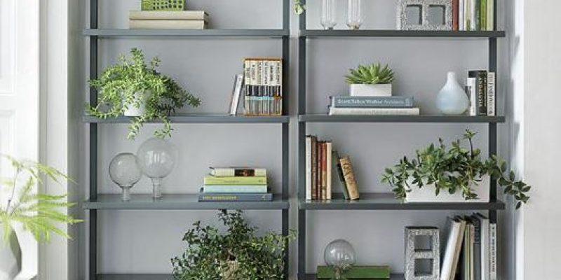 قانون بدون شکست در مورد چیدمان و دکوراسیون قفسه کتاب