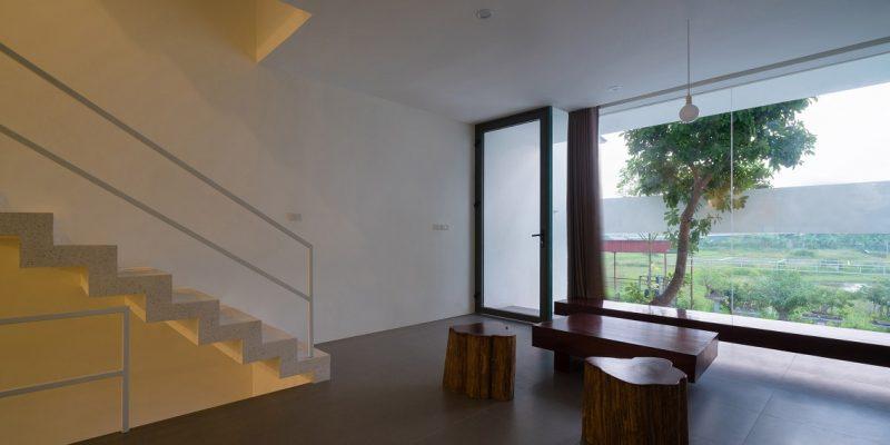رشد درختان داخل خانه باریک در ویتنام رشد میکنند / معماری Nguyen Khac Phuoc