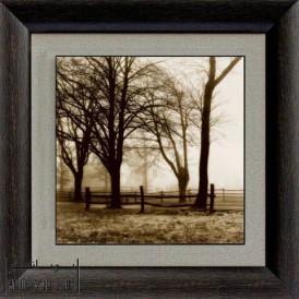 تابلو درخت عکس کد k27