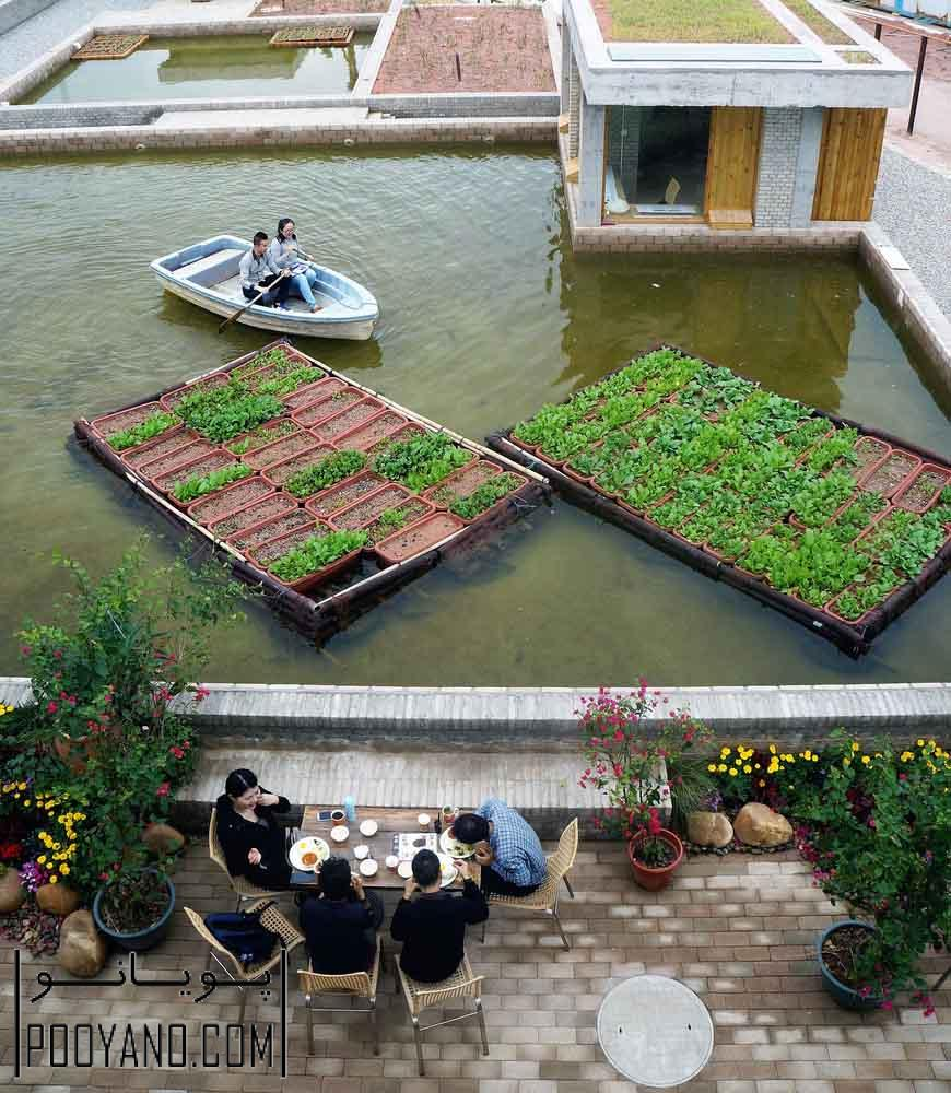 ایده معماری زمین های کشاورزی شناور
