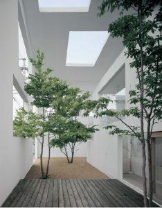 طراحی پاسیو و گلخانه به شکل آتریوم