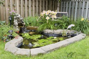 طراحی حوض برای دکوراسیون داخلی و فضای حیاط
