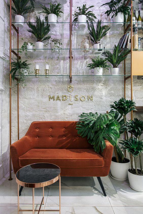 گیاه در دکوراسیون داخلی آرایشگاه