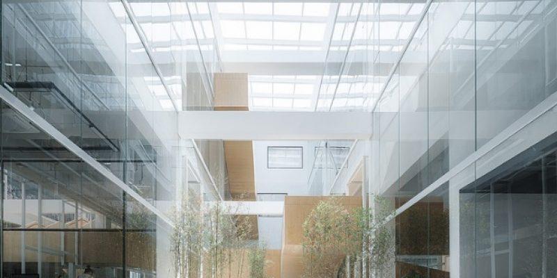 طراحی داخلی دفتر شرکت Dave & Bella / گروه معماری LYCS Architecture